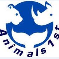 Animals1st   Social Profile