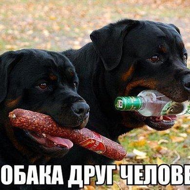 клавдий иванов (@klavdiy51)