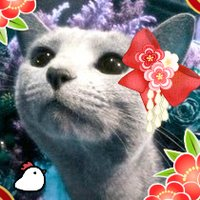小路龍流Tatsuru Kohji   Social Profile