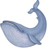 asassywhale