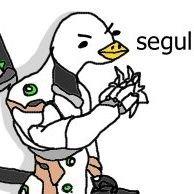 @A_Seagull