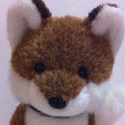 きつねの@foxperimental Social Profile
