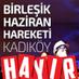 Haziran Kadıköy's Twitter Profile Picture