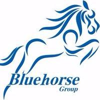 @bluehorsegroup