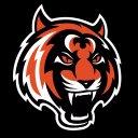 Photo of tigermuaythai's Twitter profile avatar
