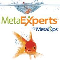 MetaExperts