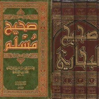 صحيح مسلم والبخاري
