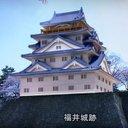 福井城下 歴史 復元
