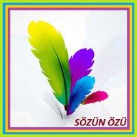 SozunOzu__