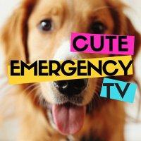 CuteEmergencyTV