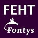 Fontys Economische H