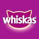 Photo of whiskasbr's Twitter profile avatar