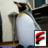 The profile image of NetPenguin