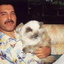 Freddie Mercury (@Freddie_Mercury) Twitter