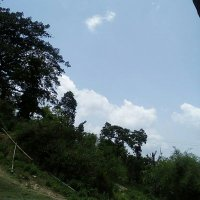 @murkhamanchhe