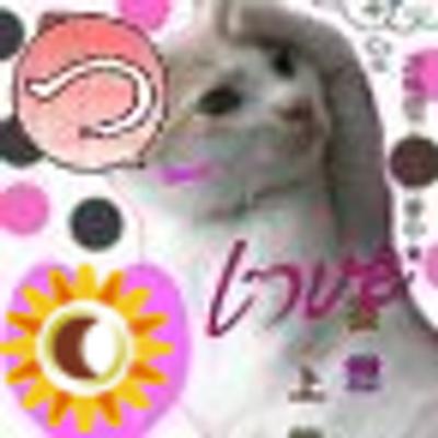 よっちゃん | Social Profile