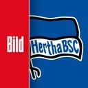 BILD Hertha BSC