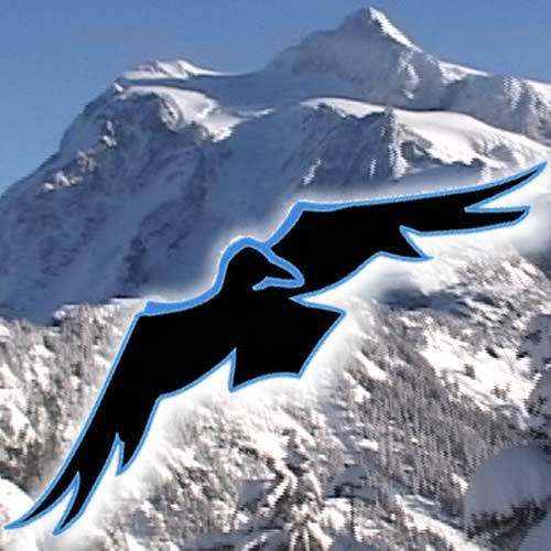 Mt. Baker Ski Area Social Profile