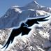 Mt. Baker Ski Area's Twitter Profile Picture