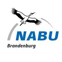 NABUBrandenburg
