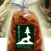 渡邉一文 屋久人 misatomiki | Social Profile