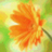 Twitter result from tarasenko6980