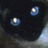 Twitter result from kiseleva7254