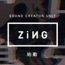 ZiNG info