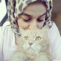 @aya_alawamy