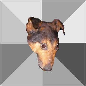 Cão da Depressão Social Profile
