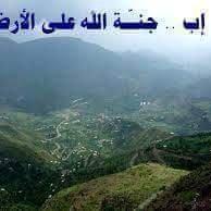 @khaledali336