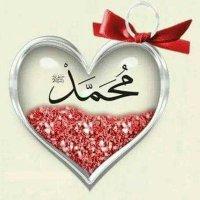 @ELHAMAMRO1