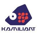 Kamiliant Luggage Ph