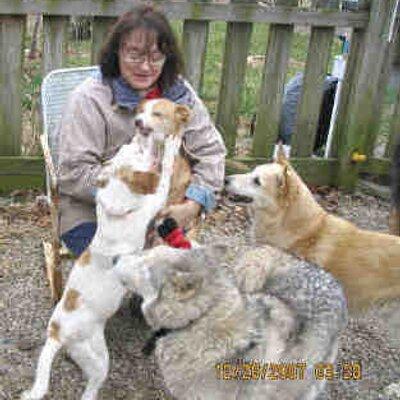 Sandra Stealey | Social Profile
