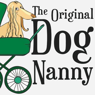 Dog Nanny MEXICO