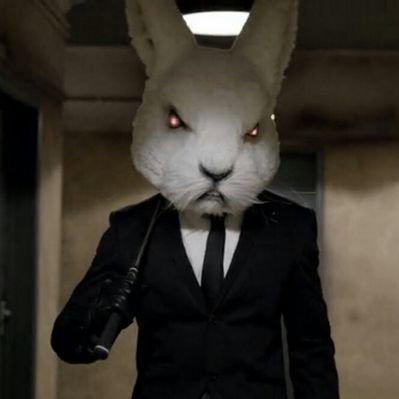 Rampage (@rampage_rabbit)