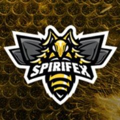Spirifex