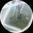 JSH Maao --Heavy JSH_Maao_Heavy のプロフィール画像