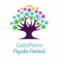 @Aso_GatoPerro