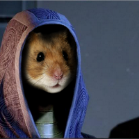 TheSpaceHamster