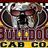 Bulldog cab co. dome  2.1 normal