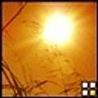 Sunlight | Social Profile