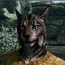 良虎 of the Wild