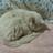 The profile image of karen_yanagi