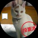 シマシマネコのママ 🌧🏳️🌈(五輪は中止。原発は禁止へ。処理水貯めとけ。核のゴミ埋めるな)