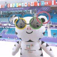 평창 올림픽 영상봇