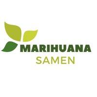 @MarihuanaSamen