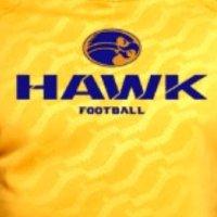 @MTHawkfootball