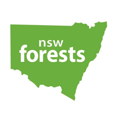 Visit NSW Forests