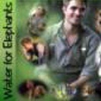 Water4Elephants | Social Profile